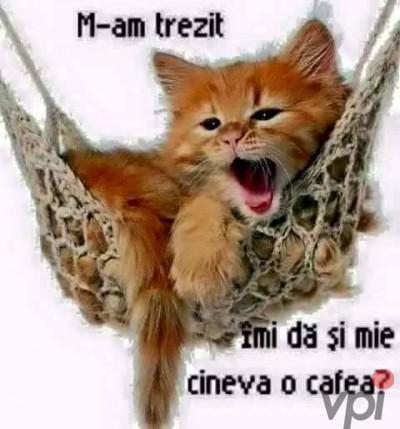 Cine da o cafea?