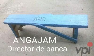 Director de banca