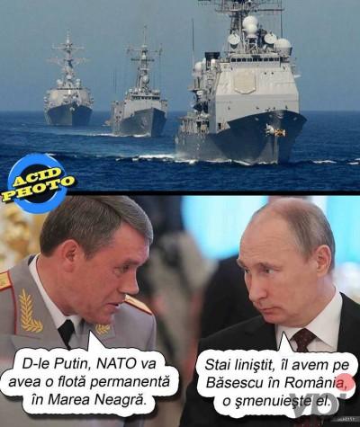 Flota in Marea Neagra