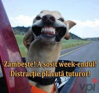 Poza de Weekend