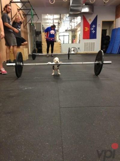 Poza la sala de fitness