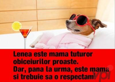 Respect pentru mama